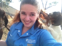 Always wear your hair in a bun - goats will eat it otherwise.